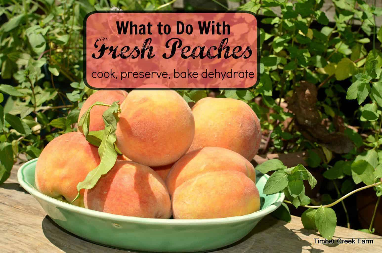 Peaches preserved baked delicious