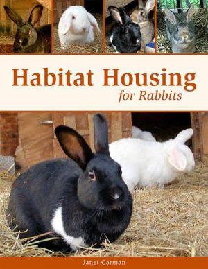 housing for rabbits