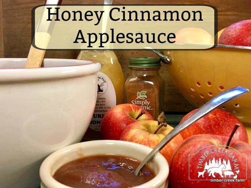 honey cinnamon applesauce