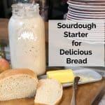 Sourdough Starter for French Bread