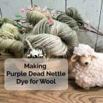 Purple Dead Nettle Dye for Wool